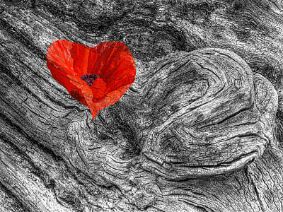 Bnw Photograph - Drifting - Love Merging by Gill Billington