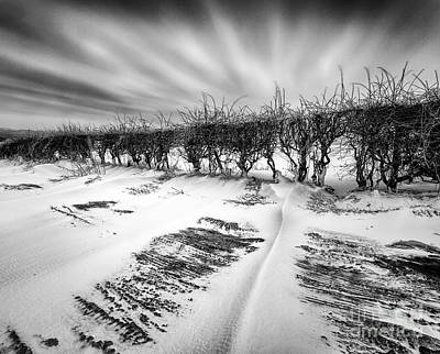 Drifting Snow Print by John Farnan