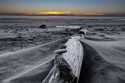 Driftwood In The Sand Print by Debra and Dave Vanderlaan