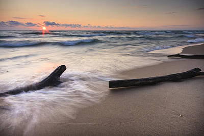 Driftwood Photograph - Driftwood On The Beach by Adam Romanowicz