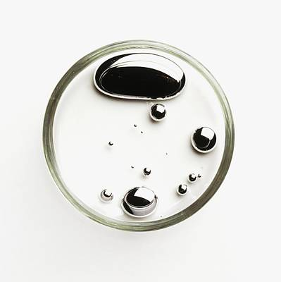 Droplets Of Liquid Mercury In Petri Dish Print by Dorling Kindersley/uig