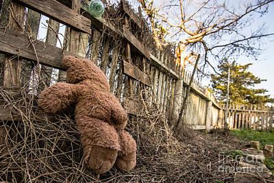 Teddie Photograph - Drunk Teddie by Will Cardoso