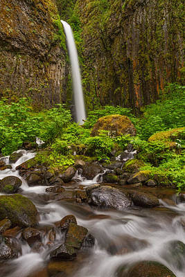 Dry Creek Photograph - Dry Creek Falls by Patricia Davidson