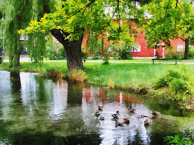Reflection Photograph - Ducks On Pond by Susan Savad