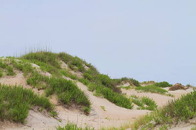 Dunes And Grasses 4 Print by Cathy Lindsey