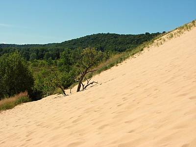 Beautiful Vistas Digital Art - Dune Climb At Sleeping Bear by Michelle Calkins