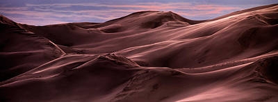 Dune Texture And Light Print by Leland D Howard