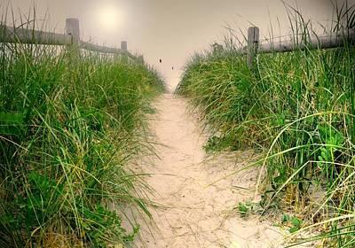 Maine Beach Photograph - Dunes Catch Light by Diana Angstadt