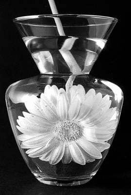 Dunking Daisy Original by Linda Suffion