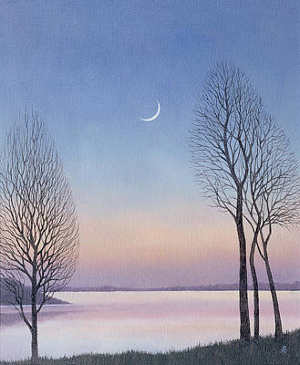Dusk At Draycote, 2008 Oil On Canvas Print by Ann Brain