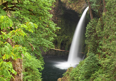 Eagle Creek Flows Over Loowit Falls Print by William Sutton