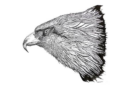 Hunting Drawing - Eagle Head Drawing by Mario Perez
