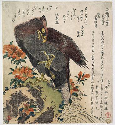Eagle Drawing - Eagle On A Rock by Kubo Shunman
