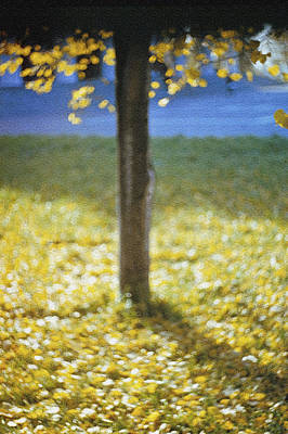 Igor Baranov Photograph - Early Autumn by Igor Baranov