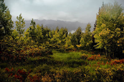 Beautiful Vistas Digital Art - Early Fall On Kebler Pass by Ellen Heaverlo