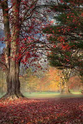 Early Morning In The Park Print by Bill Wakeley