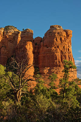 Coconino National Forest Photograph - Early Morning, Teapot Trail, Coffee by Michel Hersen