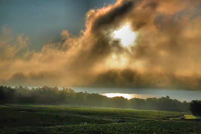 Early Morning Vineyard Print by Steven Ainsworth