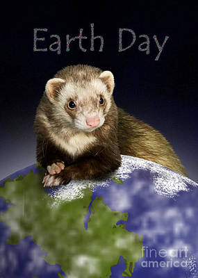 Forestry Mixed Media - Earth Day Ferret by Jeanette K