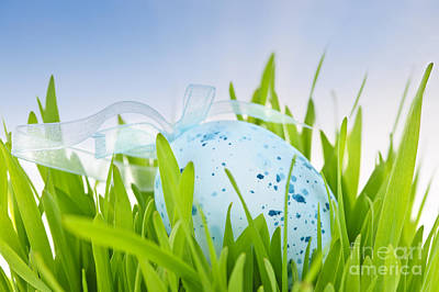 Paint Photograph - Easter Egg In Grass by Elena Elisseeva