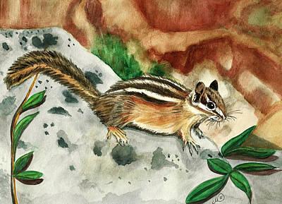 Chipmunk Painting - Eastern Chipmunk by Marcianna Howard