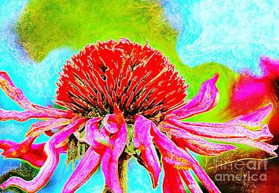 Garden Scene Mixed Media - Echinacea Purpurea by Jolanta Anna Karolska