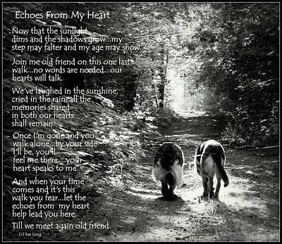 German Shepherd Dogs Photograph - Echos From My Heart by Sue Long