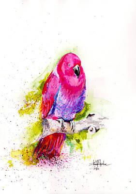 Brush.media Drawing - Eclectus Parrot by Isabel Salvador