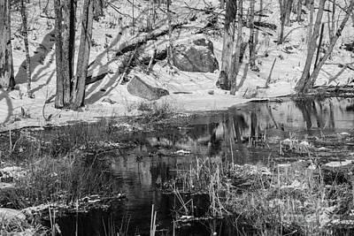 Edge Of The Marsh Print by Alana Ranney