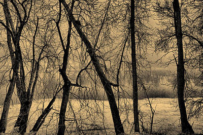 Edge Of Winter Print by Bob Orsillo