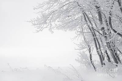 Alberta Prairie Landscape Photograph - Edge Of Winter by Dan Jurak