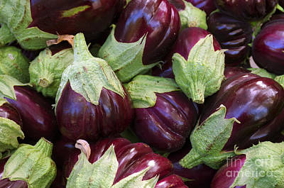 Biologic Photograph - Eggplants by Carlos Caetano