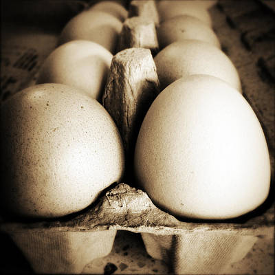 Chicken Photograph - Eggs by Les Cunliffe