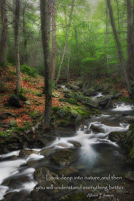 Western Ma Photograph - Look Deep Into Nature by Bill Wakeley