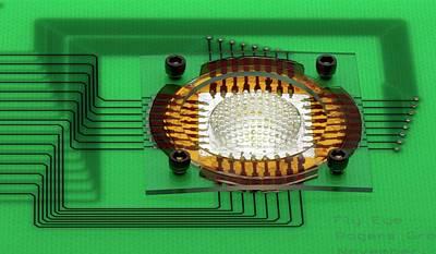 Circuit Photograph - Electronic Compound Eye Camera by Professor John Rogers, University Of Illinois
