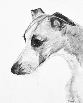 Greyhound Painting - Elegant Whippet by Kate Sumners