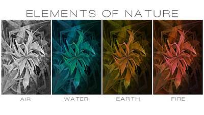 Elements Of Nature Print by Marianna Mills