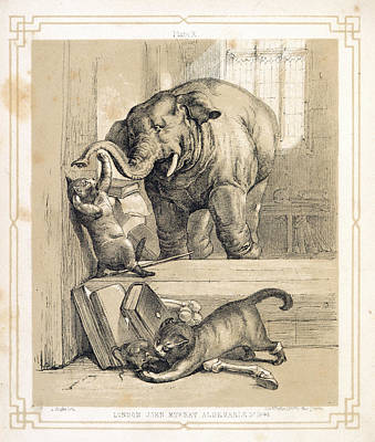 Of Cats Photograph - Elephant And Cats by British Library