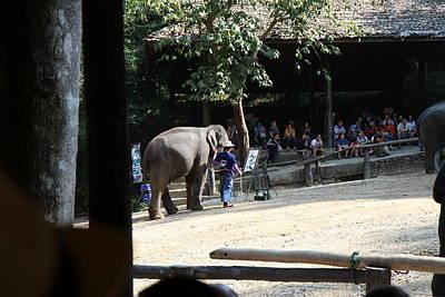 Elephant Show - Maesa Elephant Camp - Chiang Mai Thailand - 011342 Print by DC Photographer
