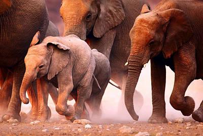 Safari Animals Photograph - Elephants Stampede by Johan Swanepoel