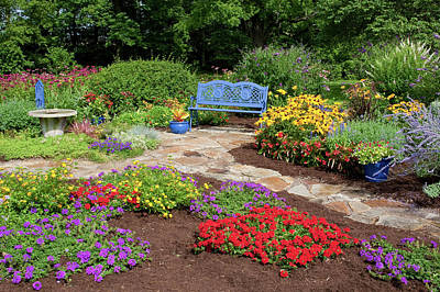 Blue Begonia Photograph - Elevated View Of A Flower Garden by Panoramic Images