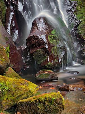 Elk Photograph - Elk Creek Falls by Leland D Howard