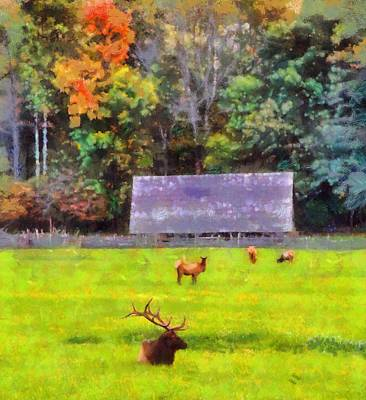 Log Cabins Mixed Media - Elk In Cataloochee Valley by Dan Sproul