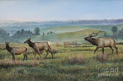 Elk In The Midwest Original by Phillip  Powell