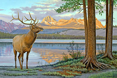 Sawtooth Painting - Elk In The Sawtooths by Paul Krapf