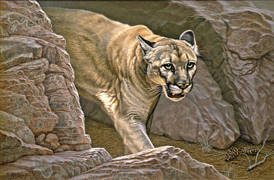 Cougar Painting - Elusive Hunter - Cougar by Paul Krapf