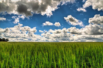 Landscape Photograph - Elysian Fields by EXparte SE