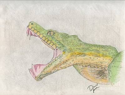 Boa Constrictor Drawing - Emerald Boa by Donald Jones