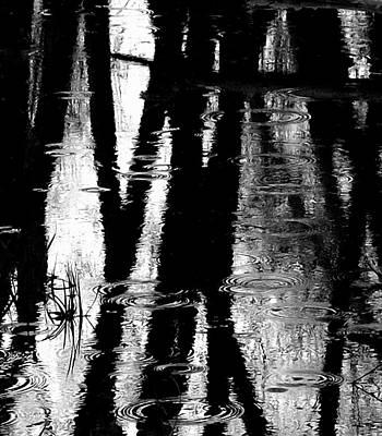 Emotional Crossing - Natures Tear Drops Print by Steven Milner