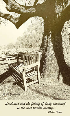Empty Bench Under An Ancient Tree Print by A Gurmankin